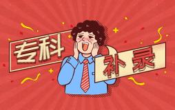 四川省2019年普通高校专科层次补录通知来了!