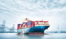 专业解读丨经济与贸易类:能力重外语,就业看地域!